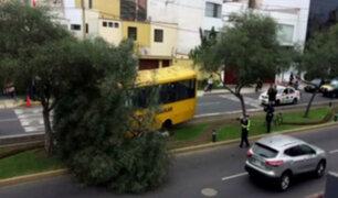 Movilidad escolar chocó contra un árbol en San Isidro