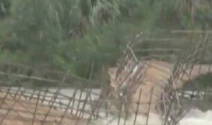 China: fuertes lluvias han provocado inundaciones en gran parte del país