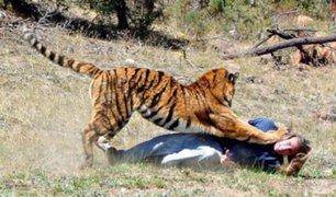Ataques de animales salvajes en diferentes partes del mundo