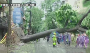 Vietnam: tifon Mirinae destroza viviendas y árboles