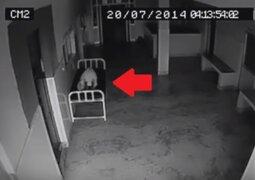 Cámara de seguridad registra cómo 'alma' abandona cadáver en un hospital