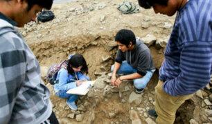 Los Olivos: hallan vestigios con más de 6 mil años de antigüedad