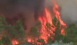 Portugal: incendios forestales arrasan viviendas y campos agrícolas