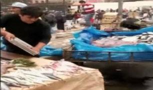 Informe 24: mercados en Lima venden carnes en condiciones insalubres