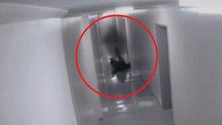 Hombre atacado por extraña sombra, el video que dio la vuelta al mundo