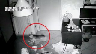 VIDEO: cámaras de vigilancia captaron momento exacto de terremoto en Italia