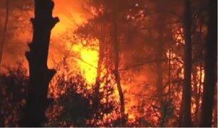 España: 810 hectáreas vienen siendo devoradas por incendios forestales