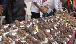 Tubérculos con propiedades curativas se ofrecen en el Gran Mercado de Mistura