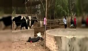 Chosica: hombre muere en pozo por gases tóxicos