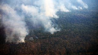 Junín: incontrolable incendio arrasa más 20 mil hectáreas en dos días
