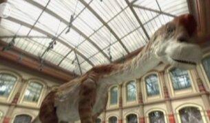 Alemania: presentan nuevos efectos especiales en museo
