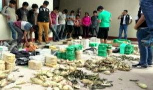 Mafia bosnia en Perú: operación combinada contra el narcotráfico