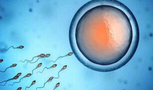 Salud reproductiva: ¿se puede producir esperma a partir de la piel?