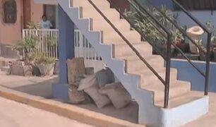 El Agustino: Municipalidad recuperó espacios públicos tomados por vecinos