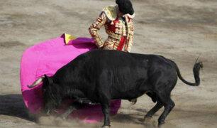 Tauromaquia en el debate: buscan referéndum contra corridas de toros