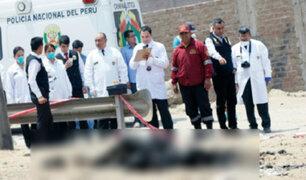 Cuerpos calcinados hallados en Jicamarca eran de madre e hija