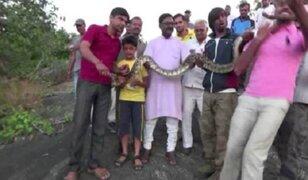 India: serpiente muerde a joven que intentaba tomarse un selfie