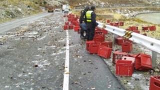 Carretera Central: tráiler que llevaba cerveza valorizada en 18 mil soles se despistó