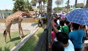 Parque de las Leyendas celebra el Día Mundial de los Animales