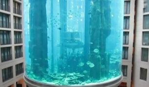VIDEO: conoce los ascensores más sorprendentes del mundo