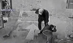 Chorrillos: delincuentes abusan sexualmente de trabajadora de grifo