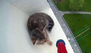 Facebook: Este rescate de un gato a 12 pisos de altura no es apto para cardiacos [VIDEO]