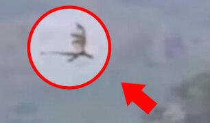 YouTube: Afirman haber grabado un dragón volando en el cielo de China [VIDEO]