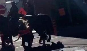 Reacción de caballo que recibió nalgada por una mujer es viral en Twitter