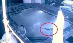 Impactantes imágenes: cocodrilo ataca a pareja en piscina de hotel