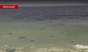 Informe 24: comprueban que playas del sur de Lima no son aptas para bañistas