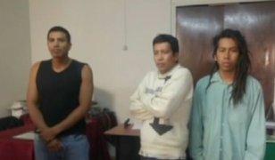 Arequipa: delincuentes utilizaban a pitbull para asaltar a sus víctimas