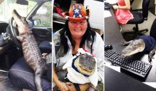 Mujer logra tenencia de cocodrilo en EEUU