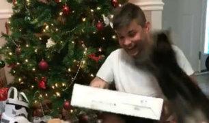 Facebook: Abría sus regalos de Navidad y fue atacado brutalmente por un gato [VIDEO]