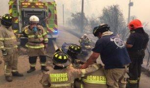 Chile: bombero muere mientras combatía incendio forestal