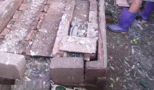 YouTube: levantó unos ladrillos del suelo y lo que descubrió fue realmente espeluznante