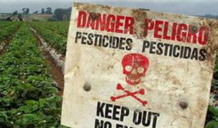 Pesticidas matan a 200 000 al año: La ONU remece al sector agrícola con este devastador informe
