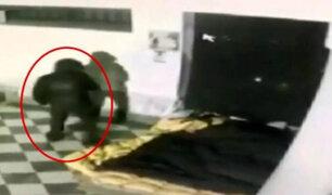 Conmoción en Italia: desconocido quemó vivo a un mendigo