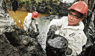 Crean esponja capaz de absorber crudo en derrames de petróleo