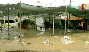 Carapongo: decenas de damnificados por desborde del río Rímac