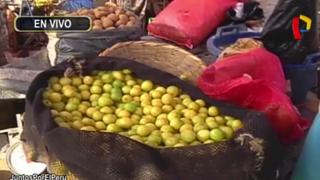 La Victoria: precio del kilo de limón bajó a 5 soles