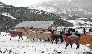 COEN: se pronostican lluvias y nevadas en la sierra sur