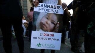 Argentina aprueba por unanimidad uso de cannabis con fines medicinales