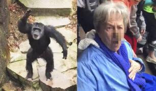 Chimpancé lanzó excremento a la cara de una abuelita