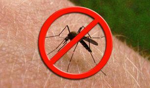 Combinado te da la mejor orientación para la prevención del dengue