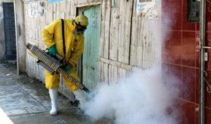 Yurimaguas: labores de fumigación de viviendas durarán 15 días