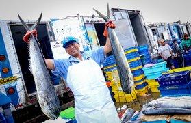 Produce: venta de pescado desde S/ 2.50 kg en plaza Manco Cápac de La Victoria