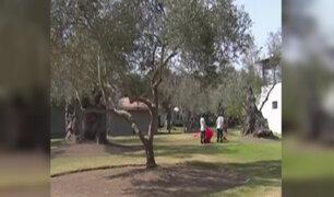 San Isidro: falta de agua afecta a parque El Olivar