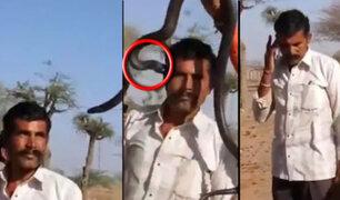 Inadvertida mordida de cobra mata a  hombre en la India