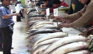 Semana Santa: conoce el precio de los productos marinos en terminal de Ventanilla