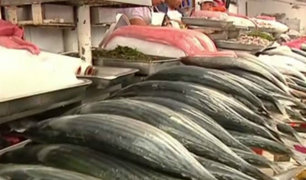 Semana Santa: precio del pescado no se ha incrementado